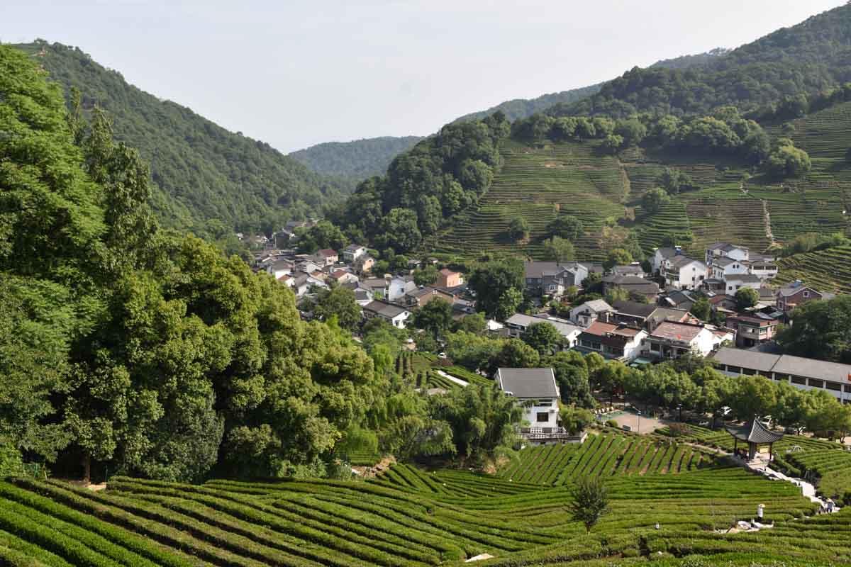 Longjing Village