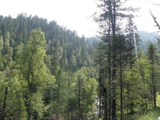 The Khamar Daban Mountains